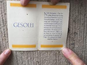 2016-10-28 GeSoLei_3